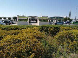 larnaca-airport-maxgrow-installation